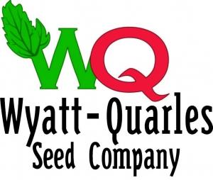 WQ Logo 2010 Color2-NOBKGRD